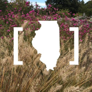 The is finalized and we are proud to announce that @dtlsstudio is now an official ( #fbe) in the state of #Illinois! We are coming for you, #LandOfLincoln!
