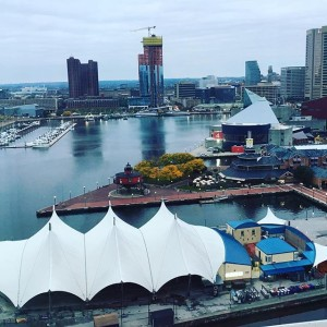 Goooooood morning, #Baltimore! @dtlsstudio is at the this week presenting with our client @monsantoco about efforts on their campus. (I doubt Julia and Michelle will sport #hairdos, this is about a different kind of #pollinator...) . . . . .