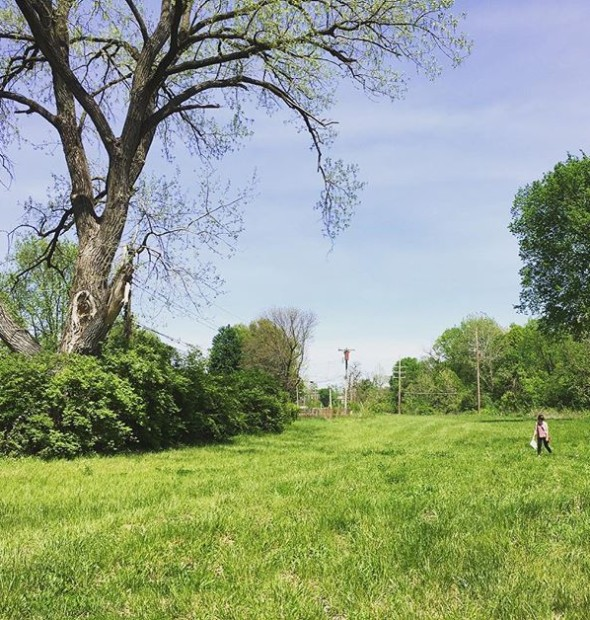 What a day for a #fieldvisit! Shelbey really is outstanding in her field... [ @greatriversstl ]