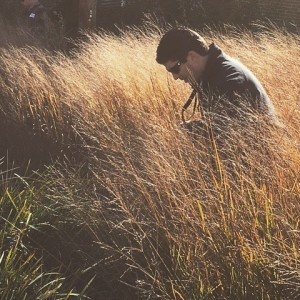 For amber waves of Panicum... who else has an election hangover? @dtlsstudio recommends a walk in a prairie as the best antidote! [ ]